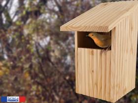 Quel est le meilleur nichoir à oiseaux visuel 3